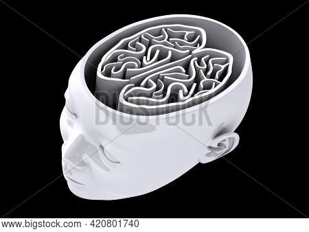 Illustration of grey human head with visible brain on black background. medicine, science and cognitive process concept digitally generated image.