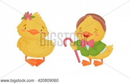 Cute Yellow Duckling In Suit Holding Cane And Standing Vector Set