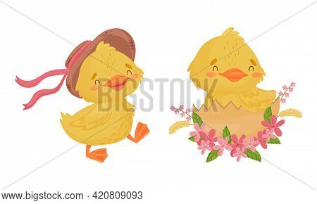 Cute Yellow Duckling Hatching From Egg And Walking In Hat Vector Set