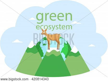 Eco Friendly, Save Environment, Nature Conservation. Deer Is Standing On Mountains. Wild Animal On A
