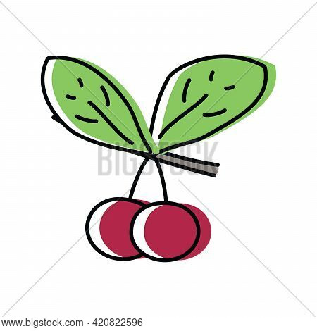 Cherry. Natural Berries. Vector Illustration In Flat Style