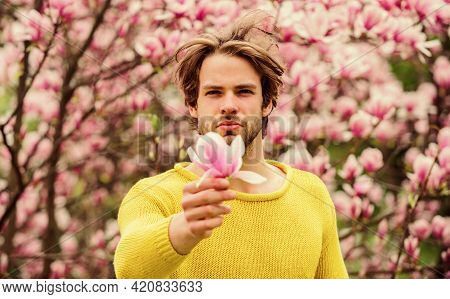 Spring In My Head. Spring Holiday. Mothers Day Gift. Allergy. Sexy Guy Blooming Magnolia Flower Tree