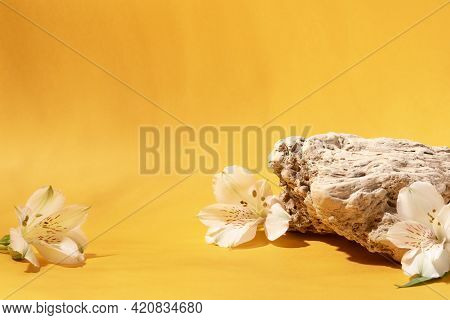 Background For Cosmetic Products Of Natural Yellow Color.