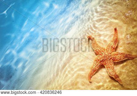 Starfish On The Summer Beach In Sea Water. Summer Background.