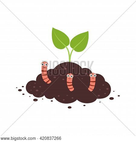 Plant Growth From Soil With Worms, Worms In The Ground, Insects In Soil, Brown Earth With Small Pink