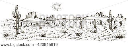 Desert Landscape Panorama, Vector Illustration. Line Sketch.