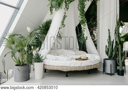 Boho And Urban Jungle Interior Design. Light Cozy Bedroom Made In White Colors With Round Canopy Bed
