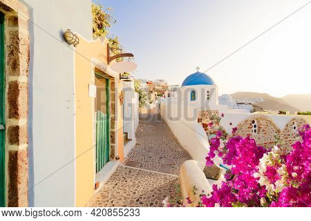 Typical Street Of Oia, Traditional Greek Village Of Santorini With Flowers, Greece, Panorama