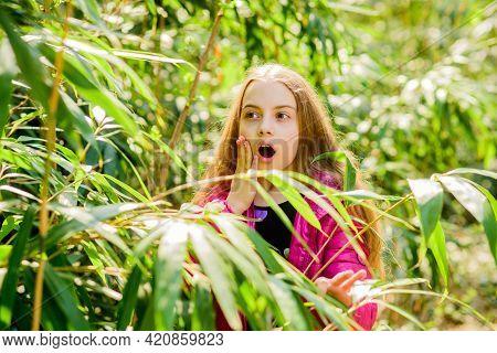 Explore Garden. Excursion To Botanical Garden. Plants Grown For Display To Public. Girl Walk In Bota
