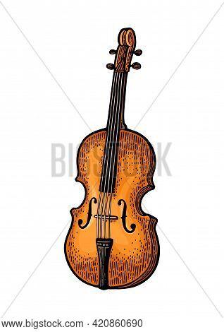 Violin. Vector Vintage Color Engraving Illustration On White