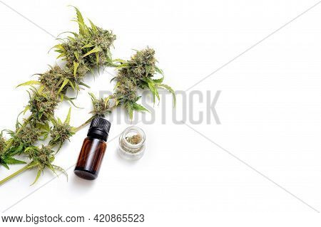 Marijuana Plant On White Background. Cannabis Plant With Blossom Buds And Medical Oil. Drying And Cu