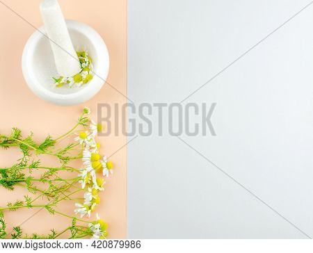 A Bouquet Of Daisies And A Mortar With Daisies On A Beige Background With A Place For An Advertising