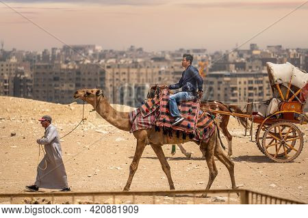 Cairo, Egypt - May 18 2021: Bedouin Camel Driver Rides An Asian Tourist From China On A Camel, On Th