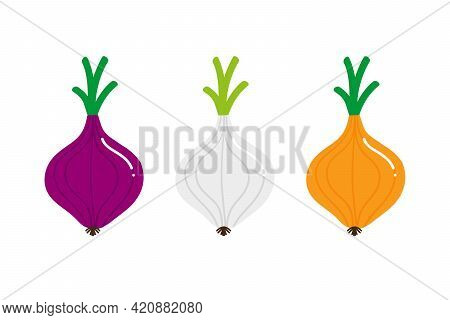 Set, Collection Of Colorful Onion, Onion Bulb Vegetables With Green Leaves. Red, Yellow, White Onion