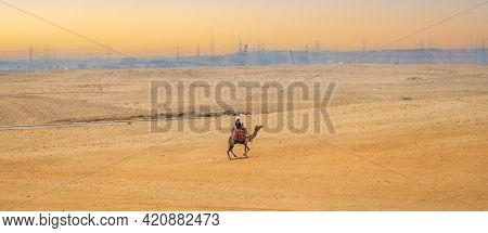 Sunset Over The Sand Dunes In The Desert. Man Riding On Camel In Desert. Desert, Camel Ride. Arabian