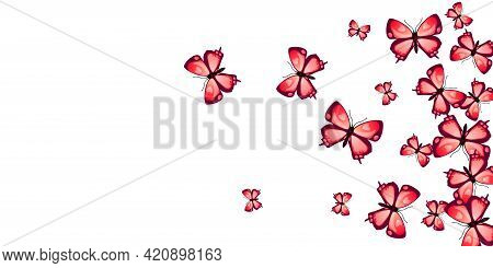 Fairy Red Butterflies Abstract Vector Wallpaper. Summer Ornate Insects.