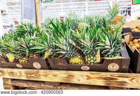Samara, Russia - May 15, 2021: Fresh Pineapple Fruits Are Sold At The Hypermarket