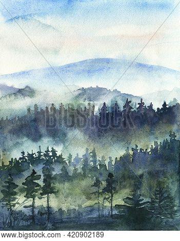 Pine Forest In Fog, Mist Mountain Landscape