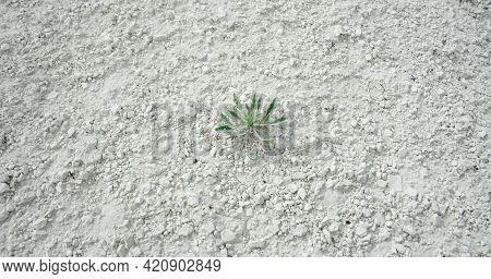 Seamless Rock Texture White Nature Crack Ground Chalk Mountain. Grunge Sketch Effect Texture . The C
