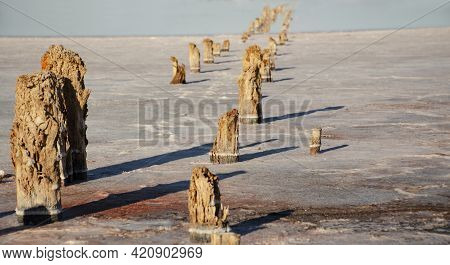White Desert Or Salt Lake. Remains Of A Wooden Building In A Salt Lake. Rotten Wooden Pillars. Extra