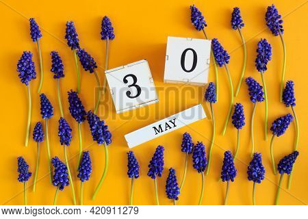 Calendar For May 30: Cubes With The Number 30, The Name Of The Month Of May In English, Scattered Fl