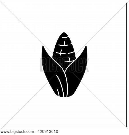 Sweet Corn Glyph Icon. Edible Vegetable.dietary Food. Vegetarian, Healthy Nutrition. Health Benefits