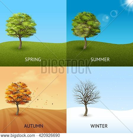 Four Season Design Concept Set With Trees On Sky Background Isolated Vector Illustration