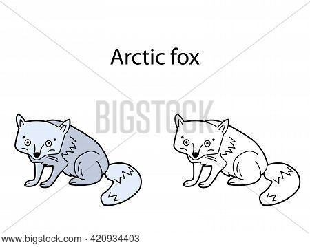 Funny Cute Animal Arctic Fox Isolated On White Background. Linear, Contour, Black And White And Colo