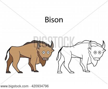 Funny Cute Animal Bison Isolated On White Background. Linear, Contour, Black And White And Colored V