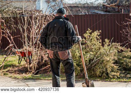 Man In Early Spring Garden. Senior Man At Garden, Man Love His Hobby, Working At Garden
