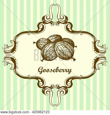Icon Of Gooseberry. Hand Drawn Sketch. Retro Vintage Design. Vector Illustration.