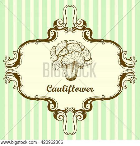 Cauliflower Icon. Hand Drawn Sketch Design. Vector Illustration.
