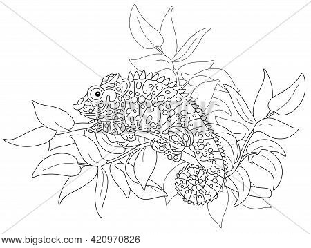 Funny Chameleon, Exotic Lizard With Protruding Eyes And A Prehensile Tail, Hiding Among Leaves Of A