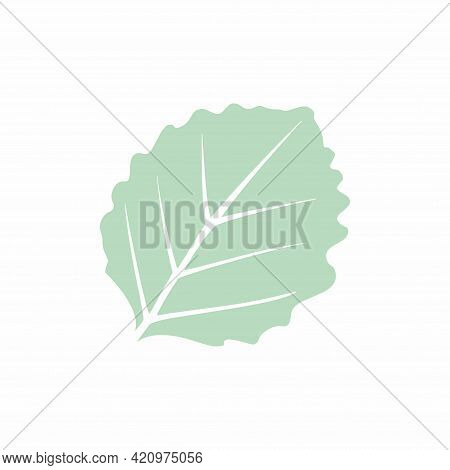 Graceful Green Leaves. Flat Twig. Vector Isolated Element. Garden Plant. Icon