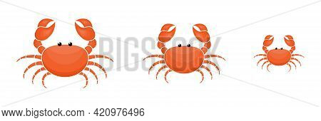 Crab Characters Three Sizes Set. Cute Crabs Family. Seafood Collection. Vector Illustration Isolated