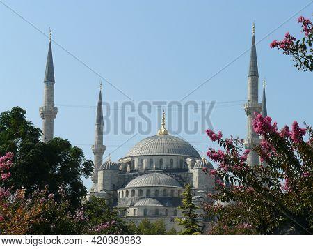 Istanbul City. Turkey. 04.10.2014 Sultanahmet Camii Framed With Flowers On A Blue Sky Background