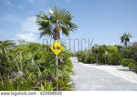 The Only Road And A Sign On Half Moon Cay Tourist Island (bahamas).