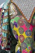 Decorated elephant at the annual elephant festival in Jaipur India poster