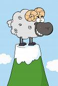 Happy Black  Ram Cartoon Mascot Character On Top Of A Mountain Peak poster