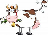 Dairy Cow With Flower In Mouth Cartoon Character poster