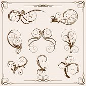 Vector floral design elements on light-brown background poster