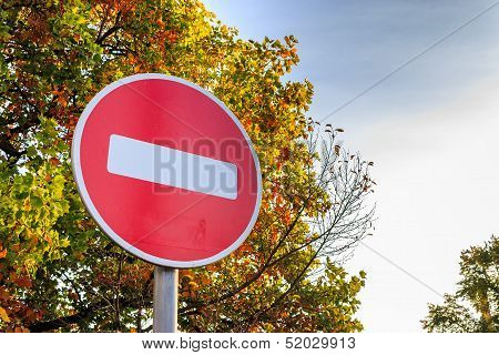 Traffic Stop Sign On Yellowed Tree.