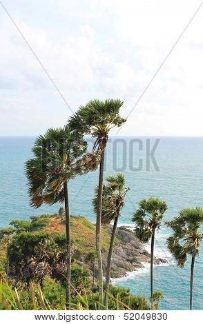 Viewpoint  Phuket ,Thailand