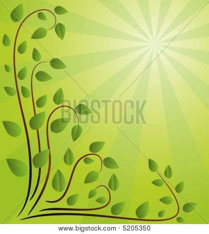 Green Background With Branches. Vector Illustration