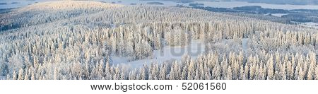Panorama Of Winter Finland