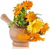 herbal flower of calendula Officinalis in wooden mortar Isolated on white background poster