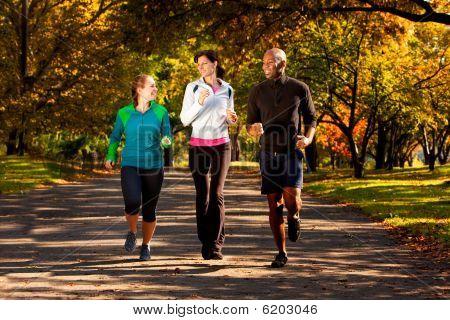 Fall Jog Park