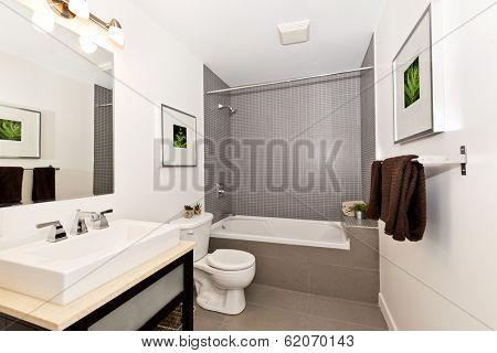 Interior three piece bathroom