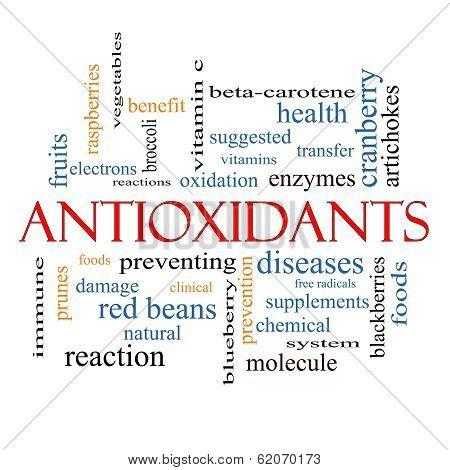 Antioxidants Word Cloud Concept