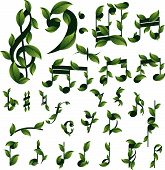 Set of floral musical notes. Vector illustration. poster